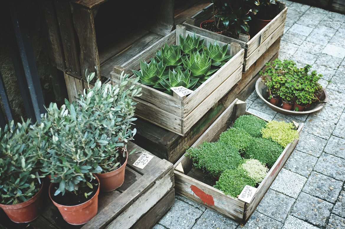 How To Choose The Best Garden Building